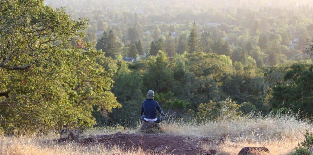 Woman in a sweater sitting on a rock and staring at the many trees.